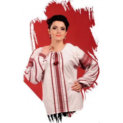 Вишиті жіночі блузи